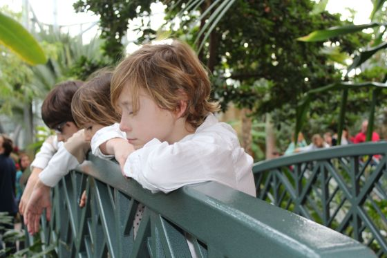 Watching the water and birds in the warmth of the tropical gardens.